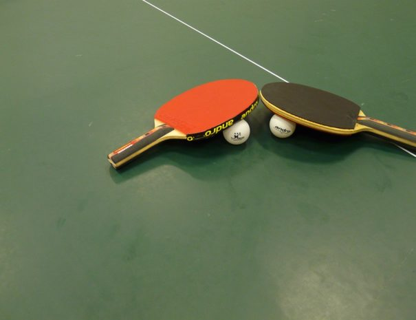 Table Tennis Sport Ping-pong Bat Table Tennis Bat